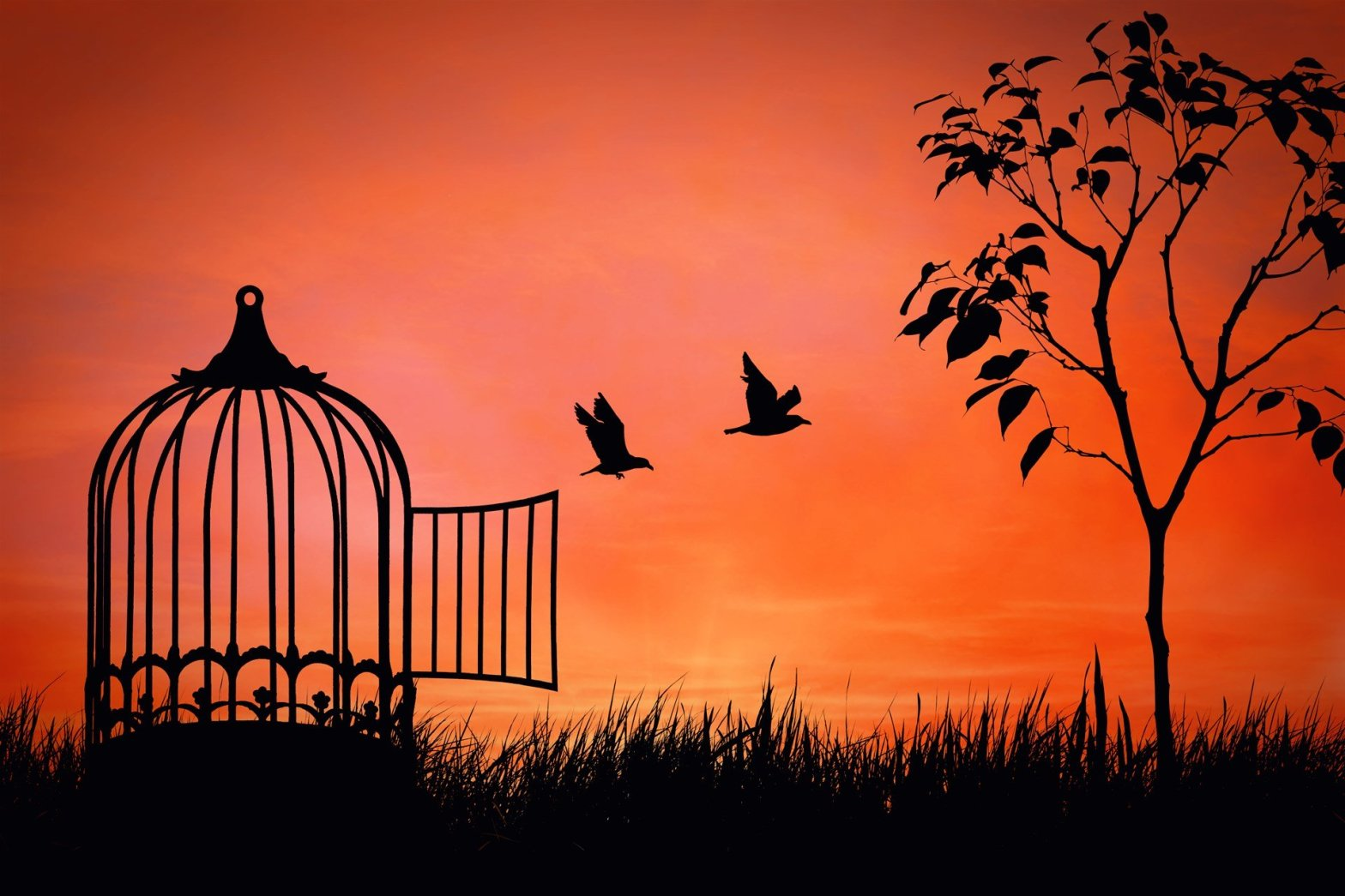 DailyWritingChallenge Day 18: Freedom – Ethical_Leader