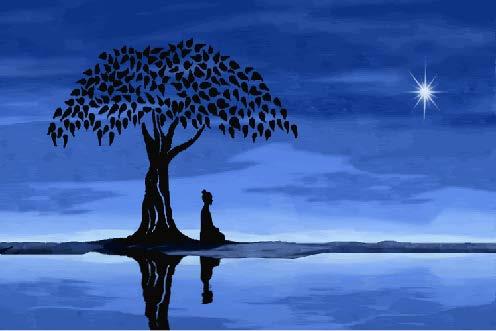 stillness 3